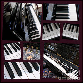 Black Beauty - Clarinet and Piano Collage by Kathryn Jones