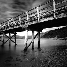 The Pier, Jackson Bay, New Zealand by Imi Koetz
