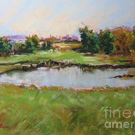 The Pond By Taylor Hill Road by Jean Costa