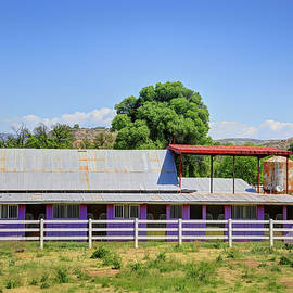 The Purple Barn by Donna Kennedy