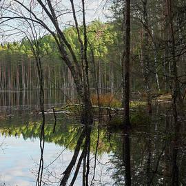 The Quiet Beaverlake in November by Jouko Lehto