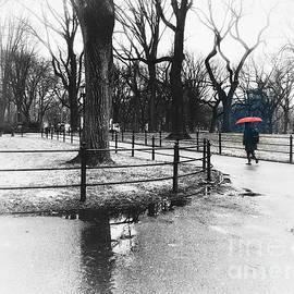 The Red Umbrella by Miriam Danar