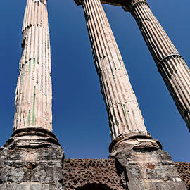 The Roman Forum by Andrew Cottrill