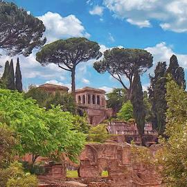The Roman Forum by Robert Murray