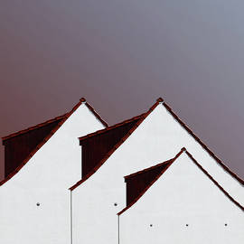 The Roofs by Arro FineArt