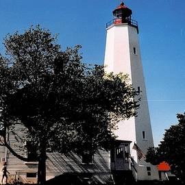 The Lighthouse at Sandy Hook  by Dora Sofia Caputo