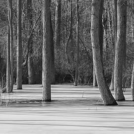 The Season of Stillness by Kathi Mirto