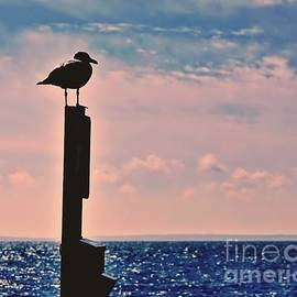 The Silhouetted Sentry by Lori Lafargue