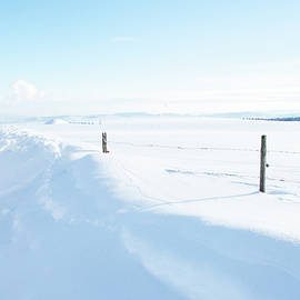 The snowed up Road and the Fence by Imi Koetz