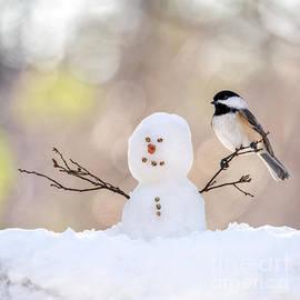 The Snowman by Karin Pinkham