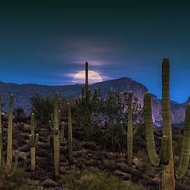 The Sonoran Super Wolf Moon by Saija Lehtonen