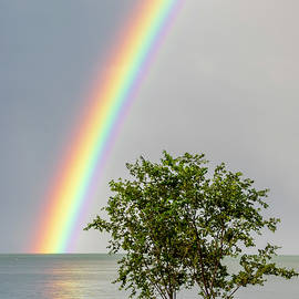 The Spectrum Of A Rainbow by Dave by Photography By Phos3 Kathryn Parent and Dave Paddick