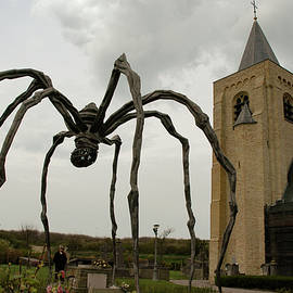 The Spider Mom at Mariakerke by Lieve Snellings
