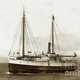 The Steam schooner Gipsy was built in San Francisco, Middlemas and  by California Views Archives Mr Pat Hathaway Archives