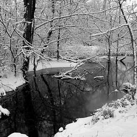 The Still After the Snow by Scott Kingery