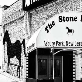 The Stone Pony-2 Perspectives by Regina Geoghan