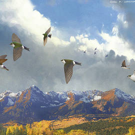 The Stragglers, Violet Green Swallows In Migration by R christopher Vest