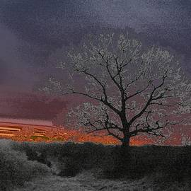 The Sun Will Rise 3 by Lynne Iddon