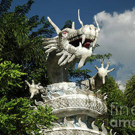 The Temple Dragon by Michelle Meenawong