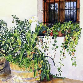 The Terrace Cortijo El Cura by Margaret Merry