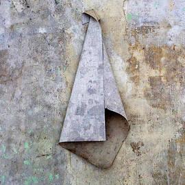 The Towel by Angelika Vogel