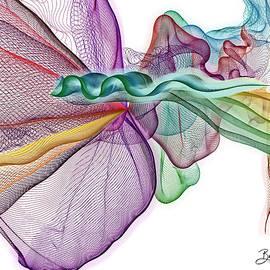 The Veils - Series #18 by Barbara Zahno