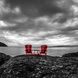 The View by Tim Beebe