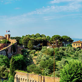 The wall of Siena by Andrew Cottrill