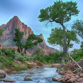 The Watchman ... by Judy Foote-Belleci