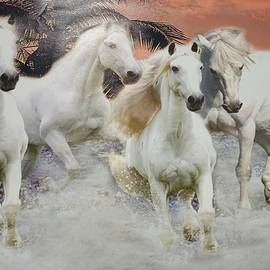 The white horses by Jafeth Moiane
