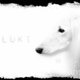 The White Saluki by Mia Stedt