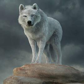 The White Wolf by Daniel Eskridge