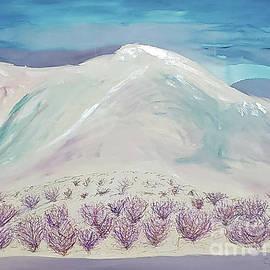 The willows, Colorado  by Escudra Art