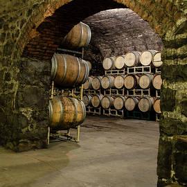 The Wine Cellar by Eleanor Bortnick
