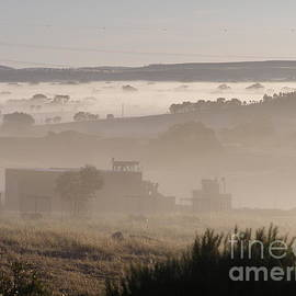 Thick Fog in the Valley, 'Arilka' Mount Pleasant, Adelaide Hills. by Rita Blom