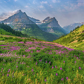 This is Glacier NP by Peter Tellone
