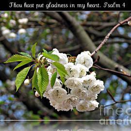 Thou hast put gladness in my heart - Psalm 4 by Kathryn Jones