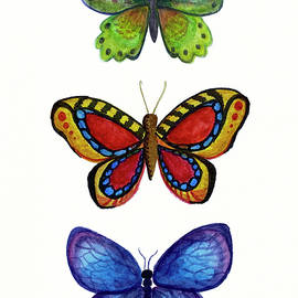 Three Colorful Butterflies by Rachel League