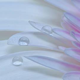 Three Drops by Sandi Kroll