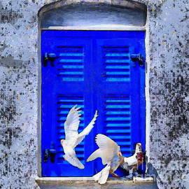 Three Pigeons On The Window by Yorgos Daskalakis