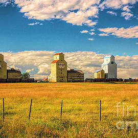 Three Prairie Sisters by Bob Lentz