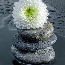 Three Rocks by Sandi Kroll