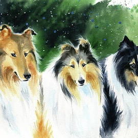 Three Rough Collies Dog Painting by Dora Hathazi Mendes