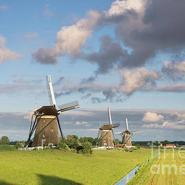 Three windmills in the countryside in the Netherlands by IPics Photography