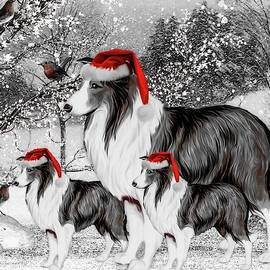 Three Wise Canines - Selective Color by Teresa Trotter