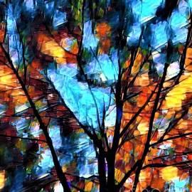 Through the Branches by Eloise Schneider Mote