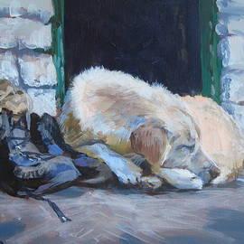 Tibetan Dog Story by Elin Thomas