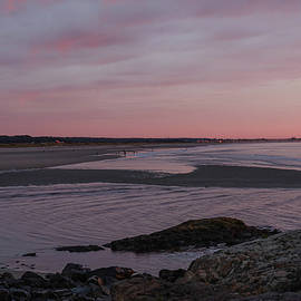 Tide Pools in Maine by Lorraine Palumbo