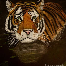 Tiger in the water by Alisha Sawyer