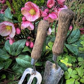 Time For Gardening by Mo Barton